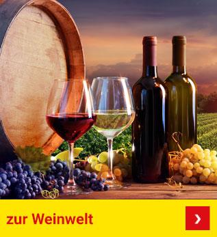 Zur Weinwelt
