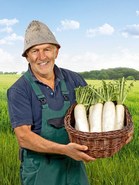 Hermann Steidle - Gemüse-Bauer aus Gundelfingen