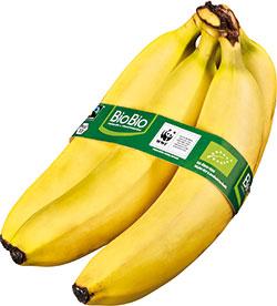BioBio Bananen