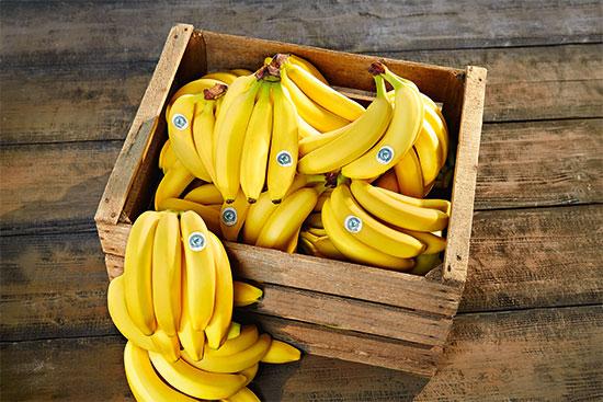 Rainforest Bananen